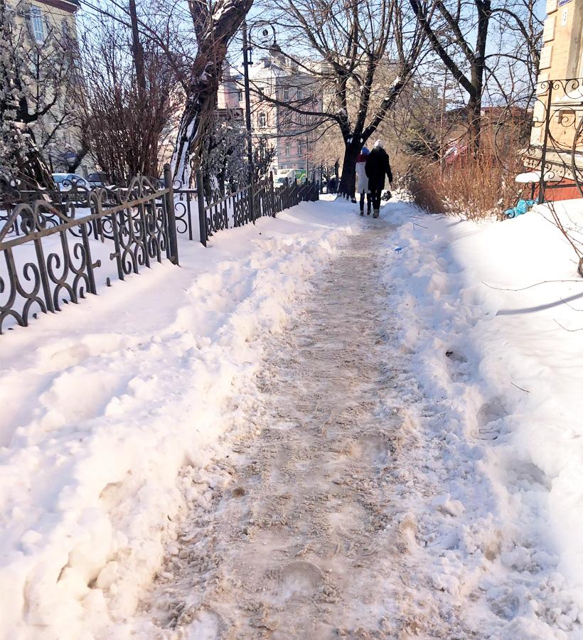 人の足で踏まれてできた歩道の画像
