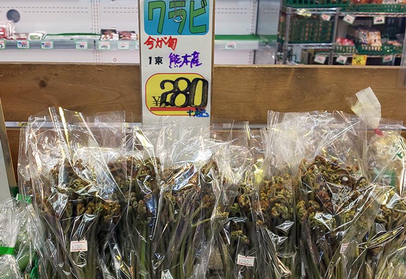 日本のスーパーで売られているワラビ